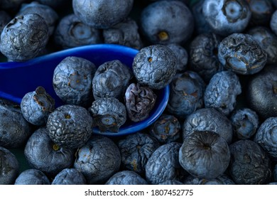 close up of Ripe bluberries in blue spoon. Top view of of Dried Delicious Blueberries