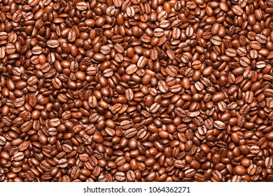 Close up of roasted coffee beans.