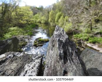 close up rock