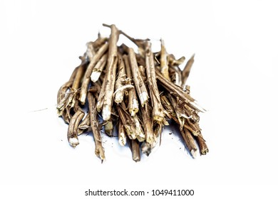 Close up of the roots of Ashwagandha plant isolated on white essential beneficial for hair loss,gives strength.