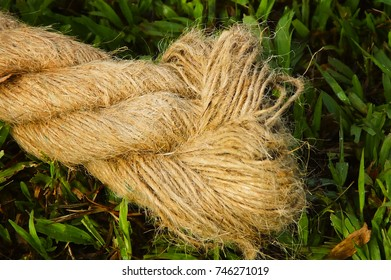 Close Up Rope On Green Grass