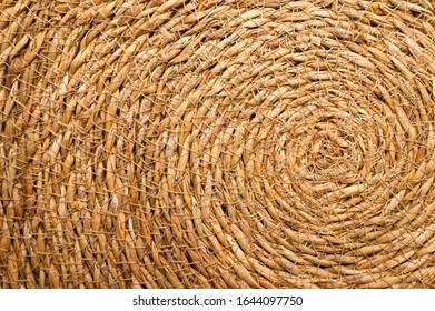 Close Up of a Round Esparto Grass Mat, Natural Fiber Background.