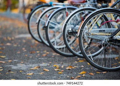 Close up row of bicycle wheels parking on the road.