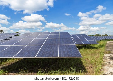 Close up rows array of polycrystalline silicon solar cells in solar power plant turn up skyward absorb the sunlight from the sun use light energy to generate electricity