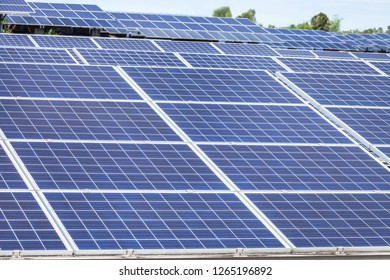 Close up rows array of polycrystalline silicon solar cells or photovoltaics cell in solar power plant station systems convert light energy from the sun into electricity alternative renewable