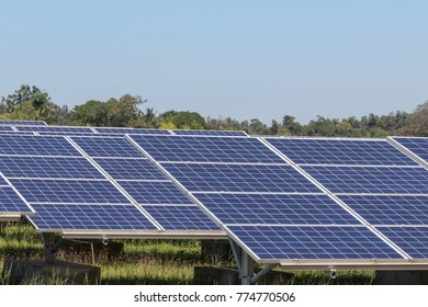 Close up rows array of polycrystalline silicon solar cells in solar power plant turn up skyward absorb the sunlight from the sun use light energy to generate electricity alternative renewable energy