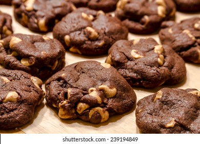 Close up of rows of chocolate cookies with peanut butter chips sitting on wax paper on table top
