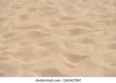 Close up sand texture. Full frame background