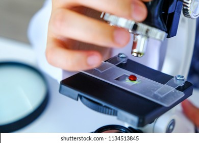 Close up scientist hands woman with microscope, blood test analyzing