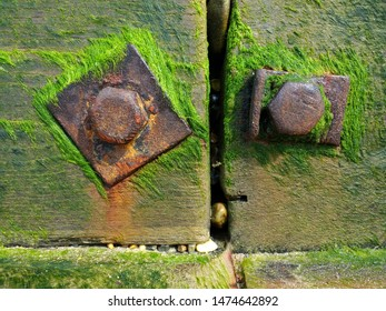 Close up of sea wall on coastal barrier in wood bolted together with large metal bolts nuts turned brown rust colour in the salt water  with vibrant green moss seaweed growing and clinging with stones