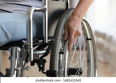 Close up of senior handicapped woman sit in wheelchair taken care of in hospital or home, mature disabled old lady grandmother in invalid carriage or wheel chair, elderly disability concept