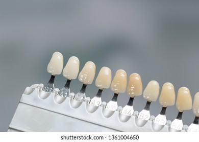 Close up of shade guide to check veneer of tooth crown in a dental laboratory