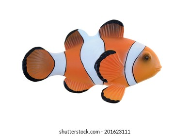 A close up shot of a Clown Fish