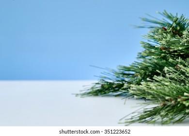A close up shot of a fir christmas tree