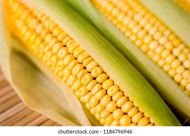 Close up shot Fresh ripe and peeled sweet corn with water drop high vitamin nature food select focus shallow depth of field