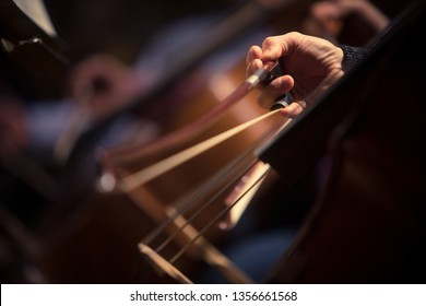 Close up shot of a man performing a cello during a concert.