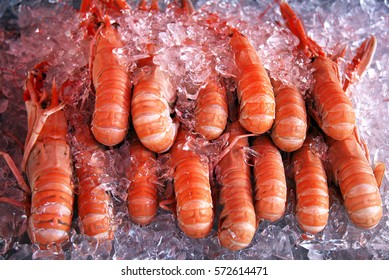 Close up shot of prawns in ice in the fish market in Norway