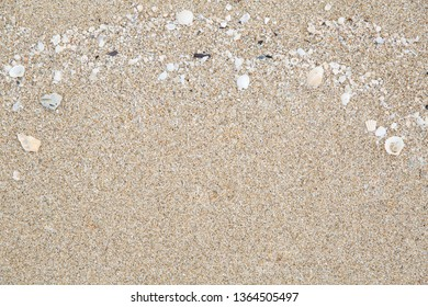 Close up shot of sand texture details with small pieces of sea shells, top view shot.