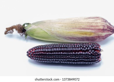 Close up Siam ruby queen corn isolated on white background. It can be eaten  fresh, steamed, grilled and microwaved. Sweet red corn of Thailand.