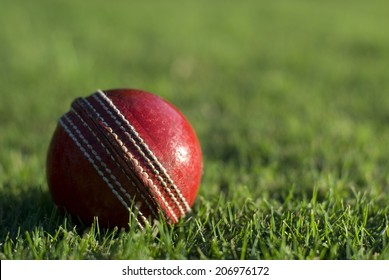 Close up of a side lit red cricket ball on the green grass of a sports field, with copyspace