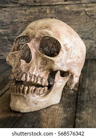 Close up skull face on wooden.