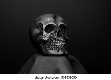 close up skull on black background