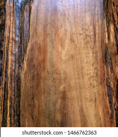 Close up of slab board panel table top with raw bark natural live edge rough woodgrain texture background backdrop