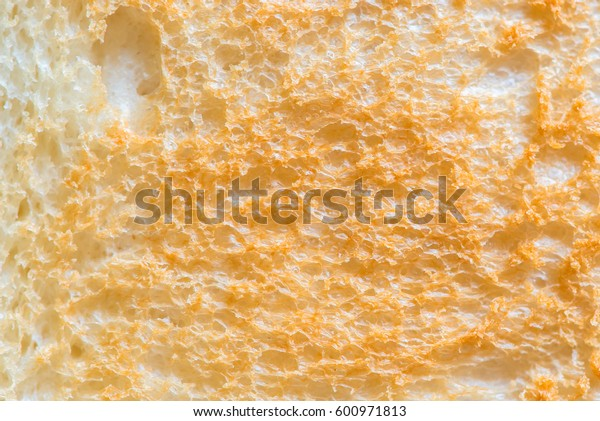 Close up Sliced Toast Bread isolated on white background, top view.