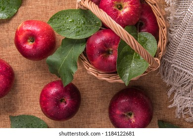 Close up of small basket full of fresh wet red apples and few apples and leaves around it on natural burlap. Selective focus. Healthy eating and autumn harvest concept.