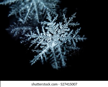Close up of snow flake - macro