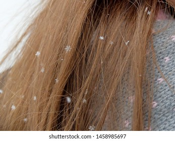 Close up snowflakes on the long brown hair of a  woman in winter day.