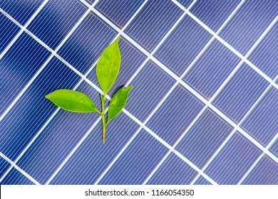 close up solar cell panel on background.