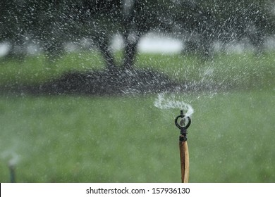 close up sprinkler