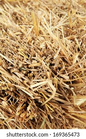 Close up of square straw.