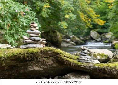 Close up of stacks of rocks on a log in a forest