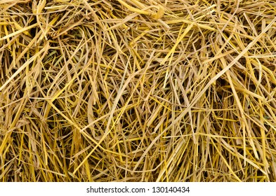 Close up of a straw texture