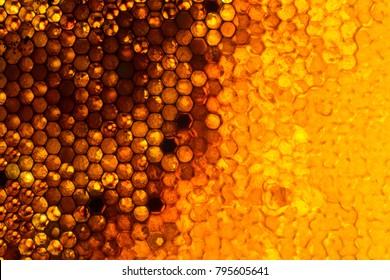 Close up studio shot of organic honey in a honey-comb.