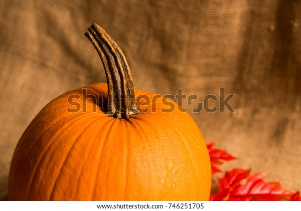 Close up studio shot of pumkin and red leaves