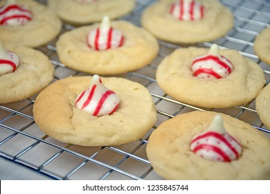 close up of sugar cookies on baking rack with striped Christmas candy