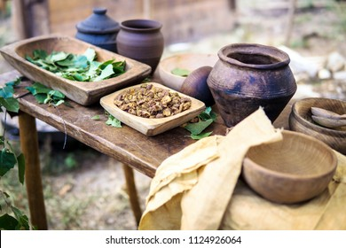 Close up of a table with natural products used to dye clothing in traditional Slavic styles and colors. Dayer, an ancient craft making colors. Fabric and natural additives. Oak bark, birch leaves.