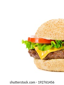 Close up of tasty hamburger. Whole background.