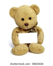 close up of teddy bear holding blank note card on white background with clipping path