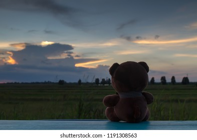 Close up of teddy bear is sitting on wooden and sunset background,this image for lonliness concept.