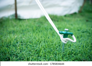 Close up of tent peg anchor on the ground tent, hook of tent, camping Nature Tourism Concept