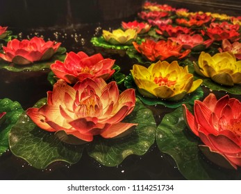 Close up of thai lotus drift on the water for beautiful decoration