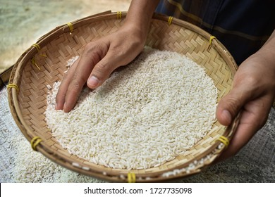 Close up A Thai woman is collecting jasmine rice in a container during the day. The way of life of Asian farmers. Healthy food