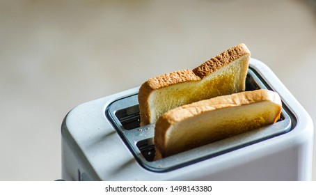 Close up of toast in toaster which ready to eat