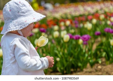 Close up of a toddler wearing a hat in a tulip farm