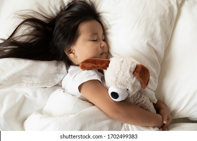 Close up top view lying in bed toddler asian girl hugs her favorite plush animal dog toy sleeping calm see sweet dreams enjoy comfy mattress, dry diaper, soft pillow fresh bedding, healthy nap concept