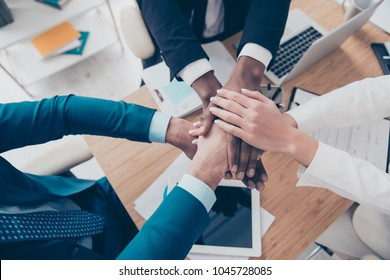 Close up top view portrait of arms on top of each other of professional successful corporate agents in the end of conference, conversation, sitting in work place, station, we are force together